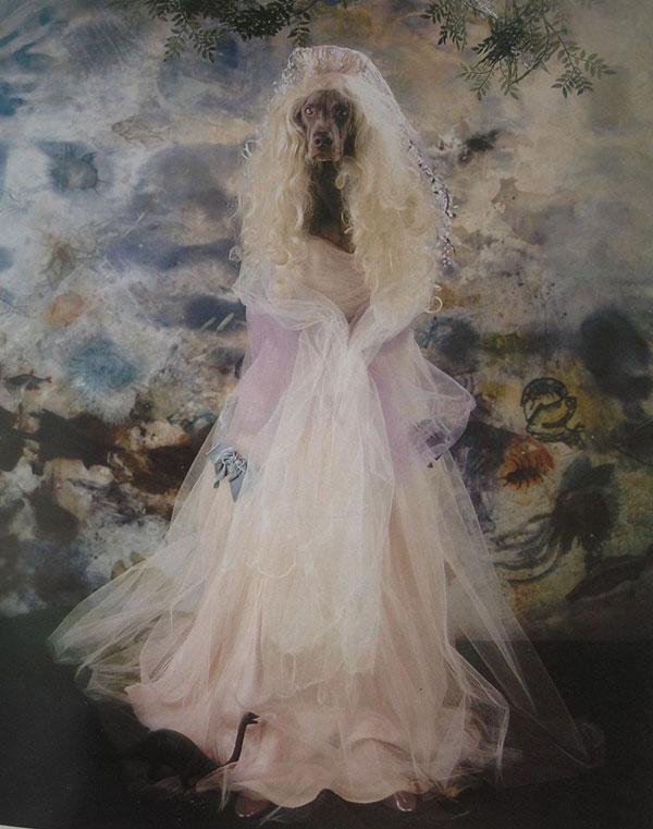 Wegman_bride